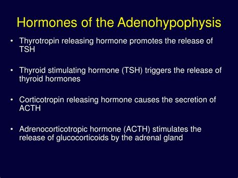 PPT - The Endocrine System PowerPoint Presentation, free